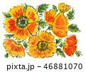 poppys19107pix7 46881070