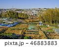 横浜市青葉区の市民農園 46883883