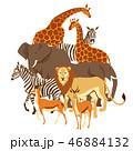 動物 きりん キリンのイラスト 46884132