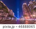 福岡タワーの真正面 46888065