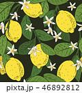 背景 花 描画のイラスト 46892812
