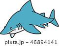 サメ 46894141
