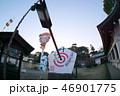 日本 風景 植物の写真 46901775
