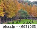 台湾 庭 庭園の写真 46931063