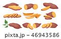 さつまいも サツマイモ 薩摩芋のイラスト 46943586