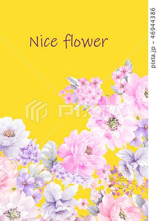 花 フラワー お花 46944386