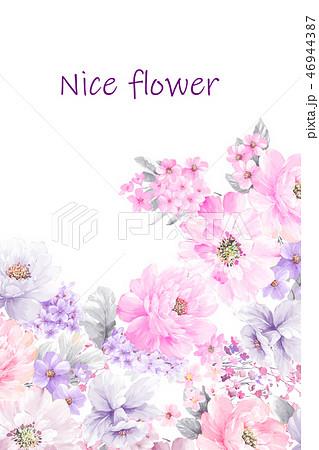 花 フラワー お花 46944387