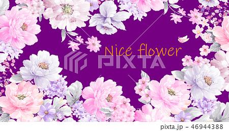 花 フラワー お花 46944388