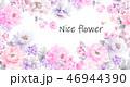 花 フラワー お花のイラスト 46944390