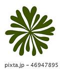 海藻 海松紋(みるもん)ベクター素材 46947895