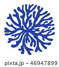 海藻 海松紋(みるもん)ベクター素材 46947899