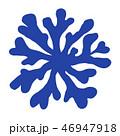 海藻 海松紋(みるもん)ベクター素材 46947918