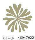 海藻 海松紋(みるもん)ベクター素材 46947922