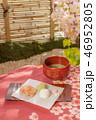 春の茶会 Spring Tea Party of Japan  46952805