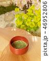 春の茶会 Spring Tea Party of Japan  46952806