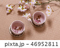 春の茶会 Spring Tea Party of Japan  46952811