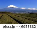 富士山 世界遺産 日本の写真 46953882