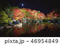 夜の好古園の紅葉 46954849