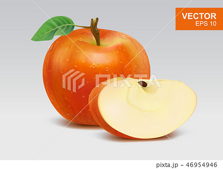 Realistic red apples vector illustration 46954946