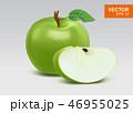 りんご アップル リンゴのイラスト 46955025
