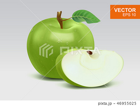 Real-life green apples vector illustration, icon 46955025