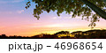 nature background 46968654