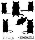ネズミのシルエット セット 46969838