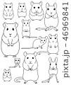 ネズミの仲間 ペット 素材 線画 46969841