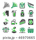 pandan icon set 46970665