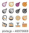 onion,shallot icon set 46970669