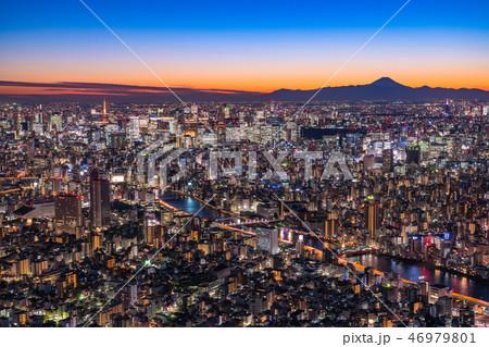 《日本の絶景》東京の夜景・富士山を望む《スカイツリー展望台より》 46979801