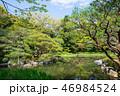 平安神宮神苑の風景 (京都府京都市左京区) 2017年4月 46984524