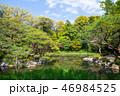 平安神宮神苑の風景 (京都府京都市左京区) 2017年4月 46984525