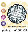 CACTUS08_Astrophytum Asterias 003 46986591