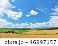 青空 夏 美瑛の写真 46997157