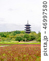 備中国分寺の秋景色 46997580