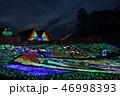 風景 日本 ネオンの写真 46998393