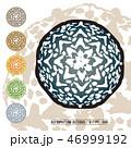 CACTUS08_Astrophytum Asterias 006 46999192