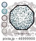 CACTUS08_Astrophytum Asterias 009 46999900