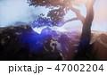 山 山頂 岩のイラスト 47002204