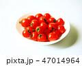 植物 野菜 ミニトマトの写真 47014964