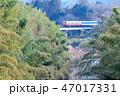 小櫃川 鉄橋 気動車の写真 47017331