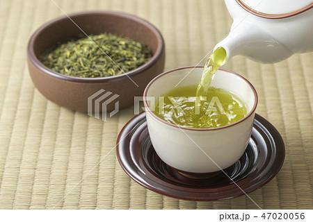 お茶を淹れる 47020056