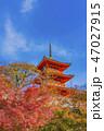 寺社仏閣 清水寺 三重塔の写真 47027915