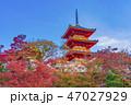 寺社仏閣 清水寺 三重塔の写真 47027929