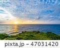 万座毛 海 夏の写真 47031420