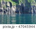 知床半島 知床 初夏の写真 47045944