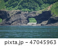 知床半島 知床 初夏の写真 47045963