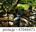 岩の隙間を流れる清流 47046471