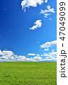 青空 夏 草原の写真 47049099